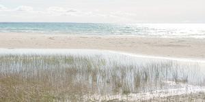 Shoreline Hues by Mike Toy