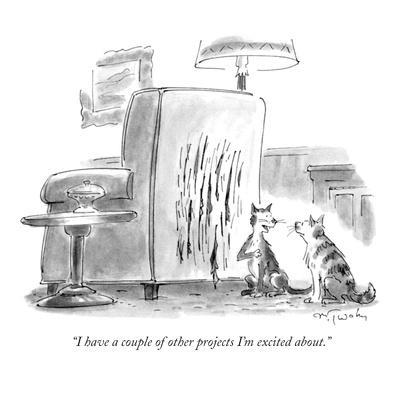 """""""I have a couple of other projects I'm excited about."""" - New Yorker Cartoon"""