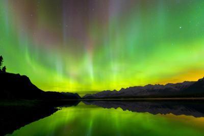 Aurora (Northern Lights) reflected in Lower Kananaskis Lake, Peter Laugheed Provincial Park, Canada by Miles Ertman
