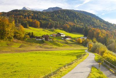Bicycle Path Through Rural Mountain Landscape in Autumn by Miles Ertman