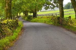 Country Road, Yorkshire Dales National Park, Yorkshire, England, United Kingdom, Europe by Miles Ertman