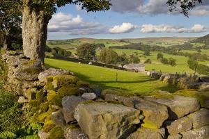 Farm Near Burnsall, Yorkshire Dales National Park, Yorkshire, England, United Kingdom, Europe by Miles Ertman