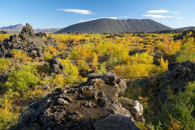 Hverfell Crater rising out of the Dimmuborgir Lava Field, Myvatn Region, Iceland, Polar Regions by Miles Ertman