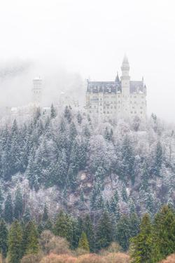 Neuschwanstein Castle in Winter, Fussen, Bavaria, Germany, Europe by Miles Ertman