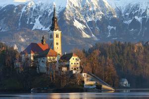 The Assumption of Mary Pilgrimage Church on Lake Bled, Bled, Slovenia, Europe by Miles Ertman