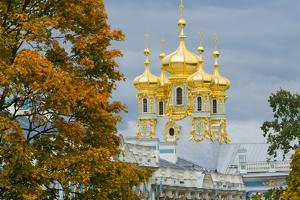 View of the domes of the Chapel of the Catherine Palace, UNESCO World Heritage Site, Pushkin, near by Miles Ertman