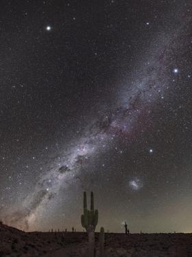 Milky Way over Cacti, Atacama Desert, Chile
