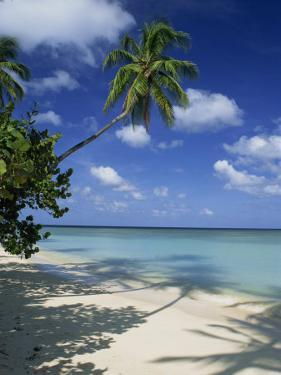 Pigeon Point, Tobago, West Indies, Caribbean, Central America by Miller John