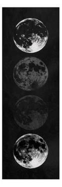 Moon Shade Black by Milli Villa