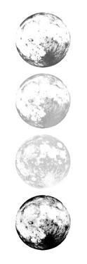 Moon Shade by Milli Villa