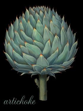 Artichoke by Mindy Sommers