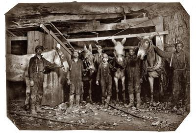 Mine Drivers and Trapper 1908 Archival Photo Poster Print