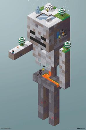 Minecraft- SkeletonTundra