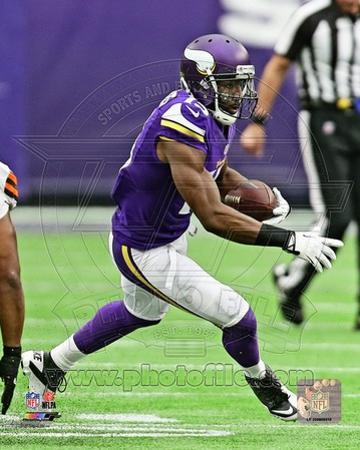 Minnesota Vikings - Greg Jennings Photo