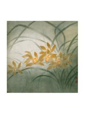 Flower Series III - Cymbidium Orchids by Minrong Wu
