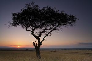 Sunset, Kenya by Mint Images/ Art Wolfe