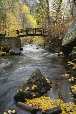 A River Running through American Fork Canyon. Small Wooden Bridge. Autumn Foliage, and Fallen Leave by Mint Images - David Schultz