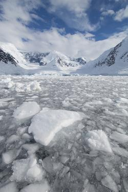 Ice at the Base of a Glacier in Wilhelmina Bay, Antarctica. by Mint Images - David Schultz