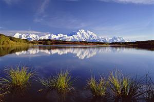 Mount Mckinley in Denali National Park, Alaska Reflected in Reflection Pond. by Mint Images - David Schultz