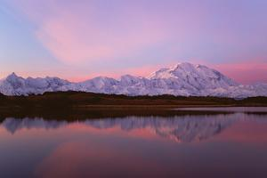Sunset, Mount Mckinley in Denali National Park, Alaska Reflected in Reflection Pond. by Mint Images - David Schultz