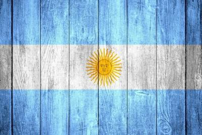Flag Of Argentina by Miro Novak