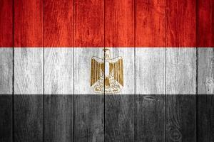 Flag Of Egypt by Miro Novak
