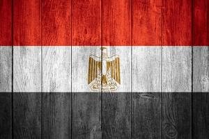 Flag Of Egypt by Miro Novak