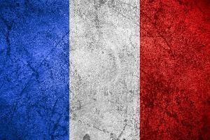 Flag Of France by Miro Novak