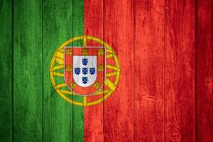 Flag Of Portugal by Miro Novak