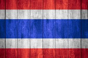 Flag Of Thailand by Miro Novak