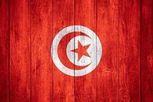 Flag Of Tunisia by Miro Novak