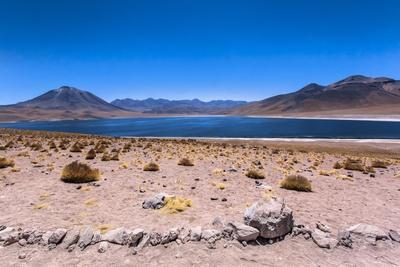 https://imgc.allpostersimages.com/img/posters/miscanti-lagoon-atacama-desert-chili_u-L-Q10VFIB0.jpg?p=0