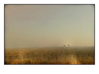 https://imgc.allpostersimages.com/img/posters/misty-meadow_u-L-PYZ12L0.jpg?p=0
