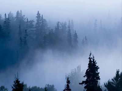 Misty Mountains XV