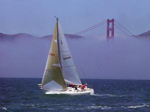 Sailboat, San Francisco, CA by Mitch Diamond