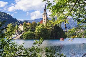 Assumption of Mary Church on an island at Lake Bled, Gorenjska, Balkan Peninsula, Carniola, Sloveni by Miva Stock