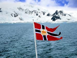 Hurtigruten Cruise Ship Postal Service Flag Displayed, Weddell Sea, Antarctica by Miva Stock