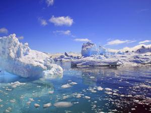 Icebergs and Ice Flows in the Artic Sea, Near Paradise Harbor, Antarctica by Miva Stock