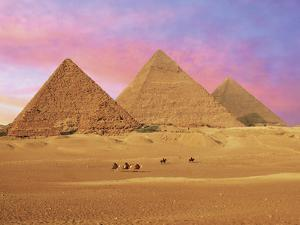 Pyramids at Sunset, Giza, Cairo, Egypt by Miva Stock