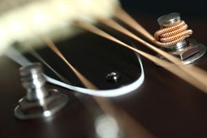 Guitar Fender by Mizanur Rahman