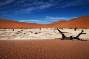 Namibia Desert by MJO Photo