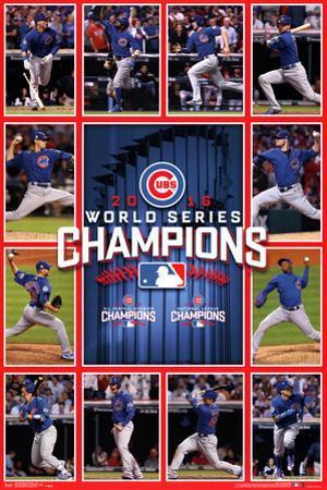 MLB: 2016 World Series Champion Team