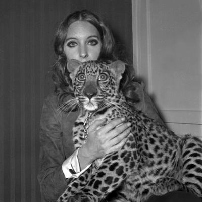 Model Antonia with Her Panther Tatch, 16 November 1967