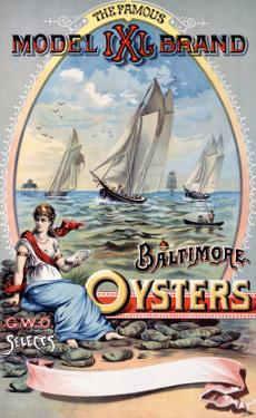 Model IXI Brand, Baltimore Oysters