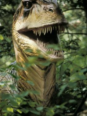 Model of Allosaurus Dinosaur at the National Zoo, Washington Dc