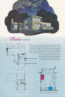 Modern Home and Floor Plan