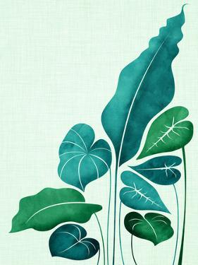 Cacophony In Teal by Modern Tropical
