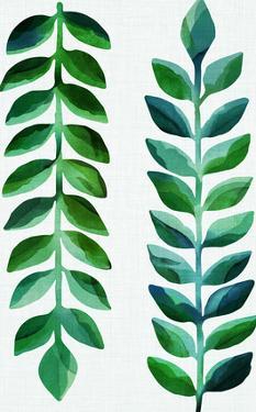 Tropical Emerald by Modern Tropical