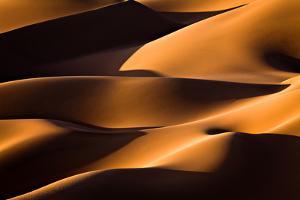Light and Shadow by Mohammadreza Momeni