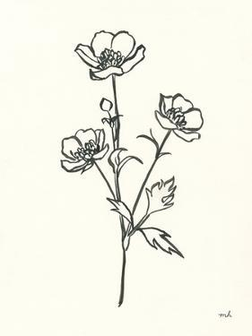 Buttercup by Moira Hershey